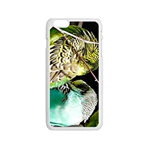 Birds Hight Quality Plastic Case for Iphone 6 by lolosakes