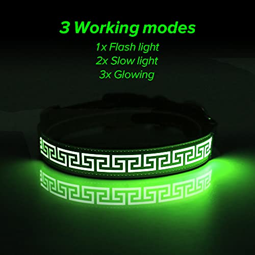 Candofly Glowing LED Dog Collar - Rechargeable Light Up Dog Collars Reflective Pet Collar Glow in The Dark Dog Lights for Night Walking & Camping Perfect for Small Medium Large Dogs (Green, Medium)