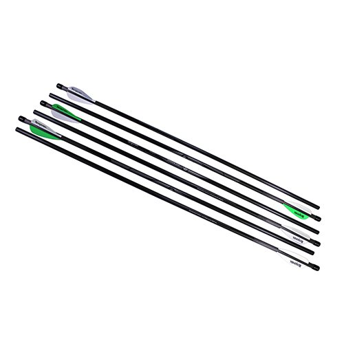 Benjamin Airbow AB6PKA Pure Carbon Arrow Six Pack, 375 Grain, 26