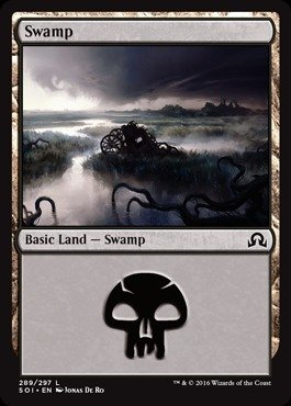 Swamp Foil (Magic: the Gathering - Swamp (289) (289/297) - Shadows Over Innistrad - Foil)