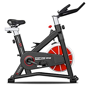 Well-Being-Matters 41SlgNs5X8L._SS300_ SYRINX Exercise Bike Indoor Cycling Bike Stationary Bikes for Home Gym Fitness Machine Belt Drive Excersize Bicycle…