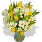 Mellow Yellow Bouquet - A luscious arrangement of Yellow Tulips and fragrant White Freesias