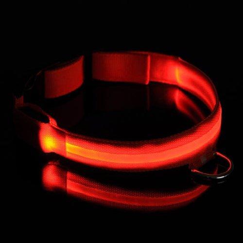 Collar para Perro con 4 Modos Luz LED Seguridad Flashing Safety Dog Pet Collar Tag (Rojo)
