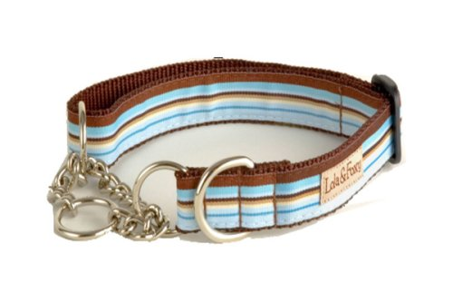 Lola and Foxy Foxy Blue and Brown Stripes Martingale Dog Collar, 1-Inch Wide, X-Large (16-Inch by 26-Inch Neck Size)