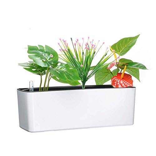 Rectangle Planter Box - Elongated Self Watering Planter Pots Window Box with Coconut Coir Soil 5.5 x 16 inch Indoor Home Garden Modern Decorative Planter Pot for All House Plants Flowers Herbs (1, White(5.5