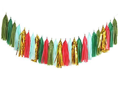 Fonder Mols Christmas Tassel Garland DIY Kit - Xmas Red Green Evergreen Gold Coral Rose Mint Tissue Paper Tassels Decor Balloon Tails Decoration Mantle -