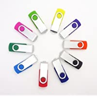 FEBNISCTE USB Key Flash Drive Memory Stick 2GB - Multi Color Assorted 10 Pack (2GB)