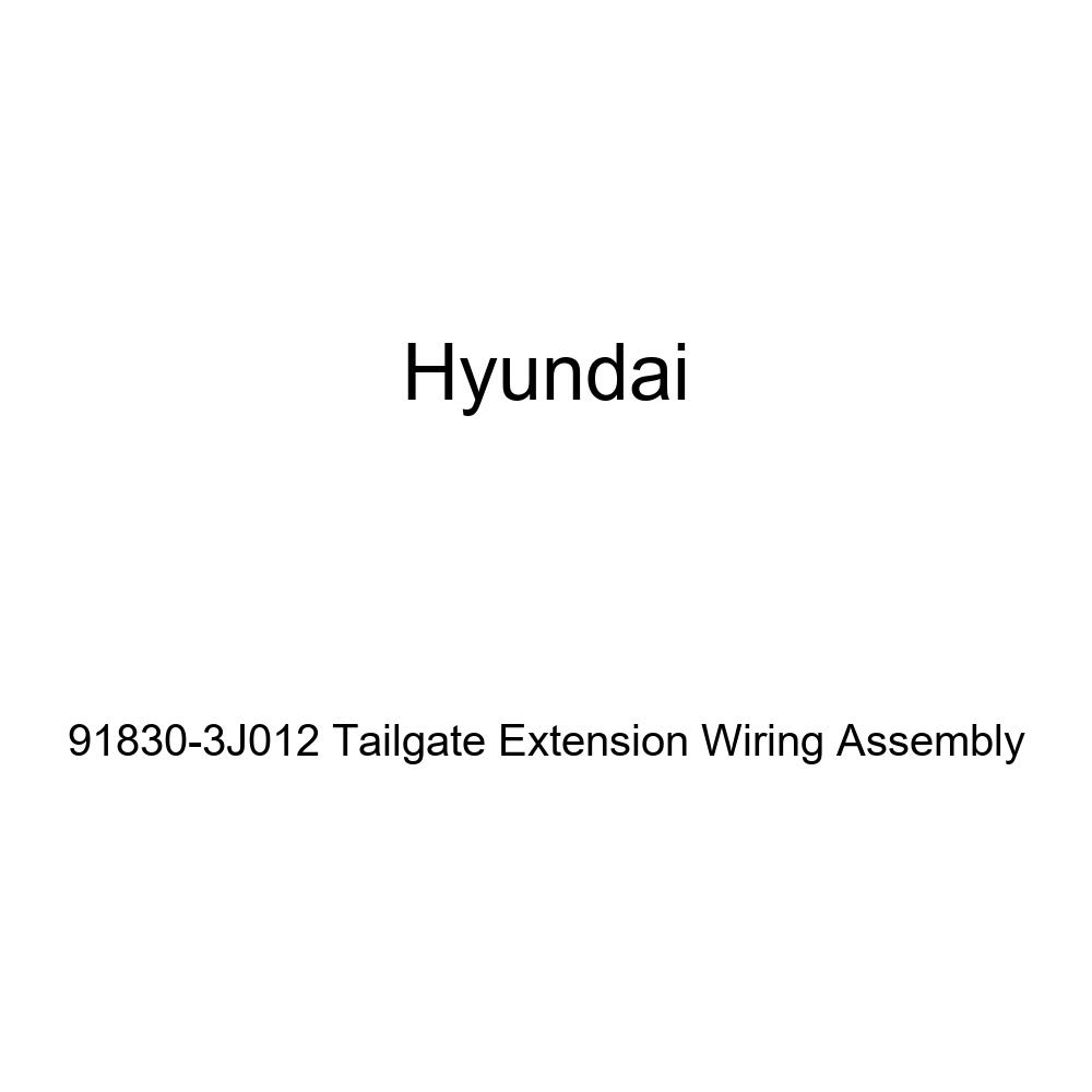 Genuine Hyundai 91830-3J012 Tailgate Extension Wiring Assembly