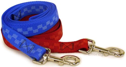 (Guardian Gear Checkered Nylon 6 Foot Leashes, Color: Red Checkered)