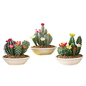 Set of 3 Faux Fake Flowering Cactus Plants in Pots 8