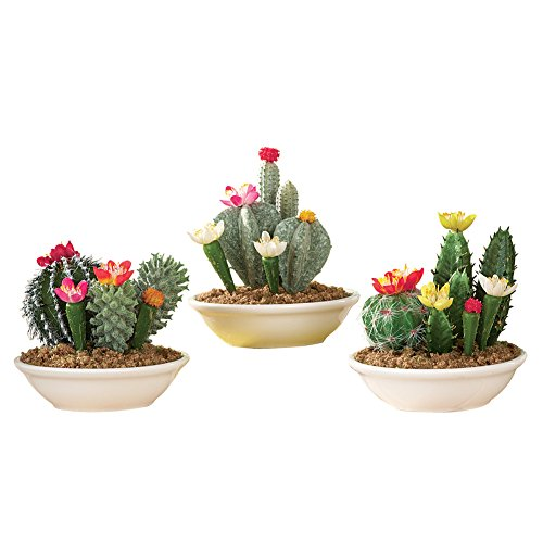 Collections Etc Set of 3 Faux Fake Flowering Cactus Plants in Pots