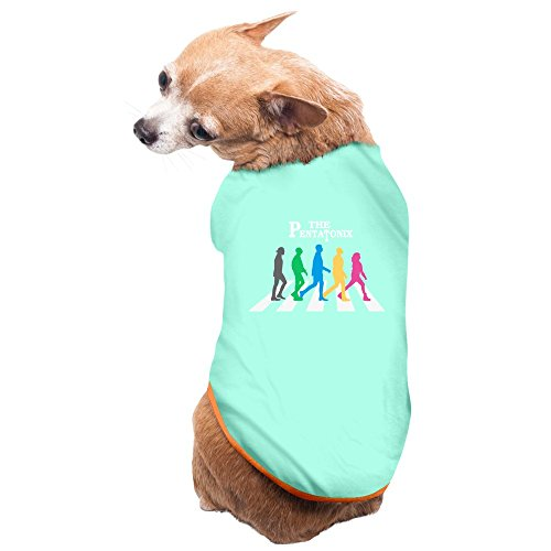 ZULA New Style Pop Music Group Doggy Tshirt SkyBlue Size L (Little Pentatonix Boy Christmas Drummer)