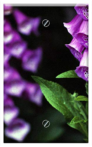 (Single-Gang Blank Wall Plate Cover - Digitalis Purpurea Foxglove Common Foxglove)