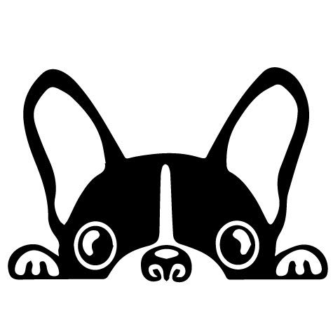 - Doran Boston Terrier Peeking Dog/Pet Sticker Decal Vinyl Car Window Wall Sticker Laptop Decal Cute Funny Peep Animal Decorative Stickers(2 Packs) (Black)