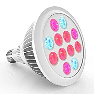 Erligpowht Circular LED Bulb - Multi Color