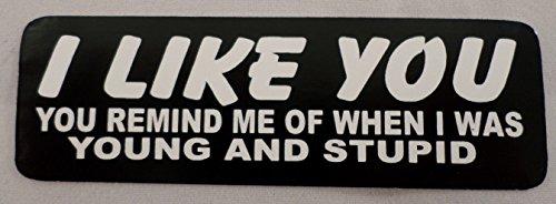 Hot Leathers I Like You, Remind Me of Myself Biker Uniform Motorcycle Helmet Decal Sticker