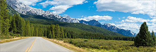 Road Passing Through a Forest, Bow Valley Parkway, Banff National Park, Alberta, Canada by Panoramic Images Laminated Art Print, 51 x 17 - Parkway Bow Valley