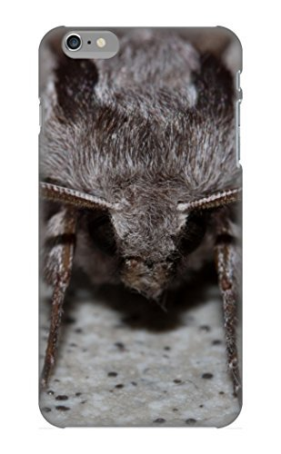 Ednahailey Case Cover For Iphone 6 Plus - Retailer Packaging Animal Pine Hawkmoth Moth Protective Case (I Pine 6 Plus)