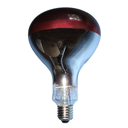 (Tusk Ruby Red Glass Infra-Red Bulb (250w) (Red))