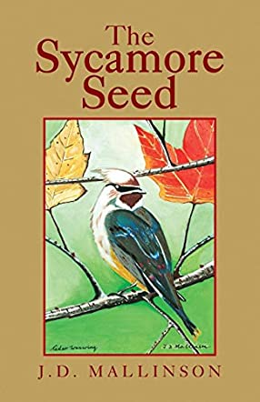 The Sycamore Seed