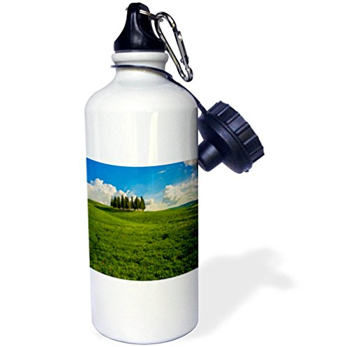 3dRose Danita Delimont - Italy - Italy, Tuscany, Pines, Hillside - 21 oz Sports Water Bottle (wb_277581_1) by 3dRose