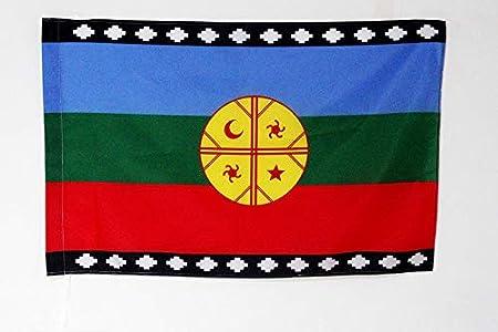 AZ FLAG Bandera del Pueblo MAPUCHE 150x90cm para Palo - Bandera ARAUCANOS 90 x 150 cm: Amazon.es: Hogar
