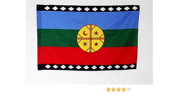 AZ FLAG Bandera del Pueblo MAPUCHE 90x60cm para Palo - Bandera ...