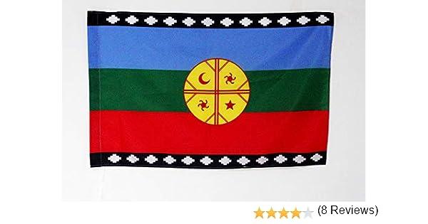 AZ FLAG Bandera del Pueblo MAPUCHE 90x60cm para Palo - Bandera ARAUCANOS 60 x 90 cm: Amazon.es: Jardín