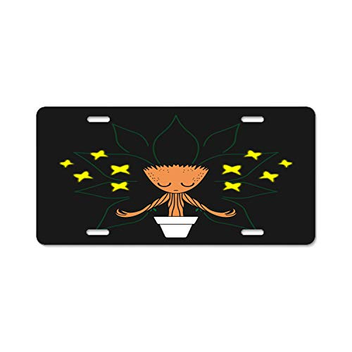 Hizhongmen Personalized Name On License Plate - Yoga with The Fireflies Custom Auto Car Tag