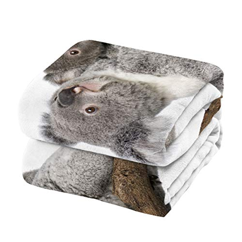 Savannan Fleece Blanket Throw Blanket for Bed or Couch,Super Soft Microfiber Fuzzy Decorative Flannel Blanket for Adults Kids,Koala (60 x 80 Inches)