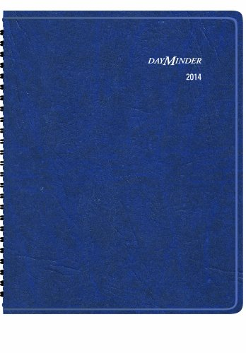 DayMinder 2014 Scenic Weekly and Monthly Planner, Blue, 8.88 x 11.38 x .56 Inches (G700-17), Office Central