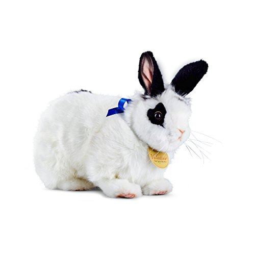 Playful Valentino The Love Bunny Plush Toy