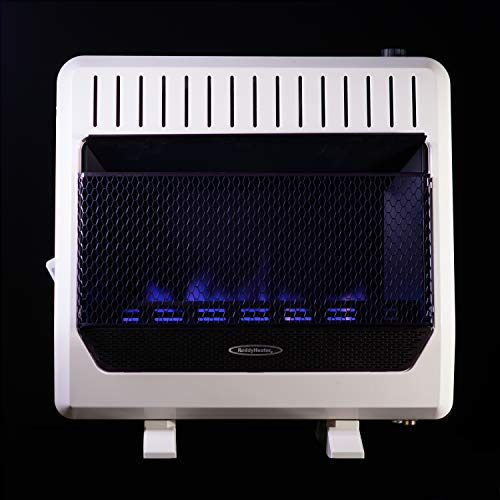 Sure Heat BWH30NLTE Dual Fuel Flame Wall or Floor Mount Heater, 30K BTU, Beige/Tan/Blue (Vanguard Vent Free)