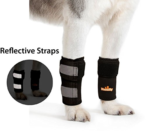 NeoAlly Dog Front Leg Braces [Pair] Canine Carpal and Wrist Support with Safety Reflective Straps for Front Hock, Cruciate Ligament, Wound Wrap and Loss of Stability from Arthritis (L/XL (Reflective Leg Wraps)