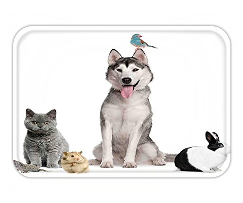 Minicoso Doormat Animal Group of Pets like Cat Dog Bunny and Bird on the White Background Digital Print White and - Cat Tiffany White