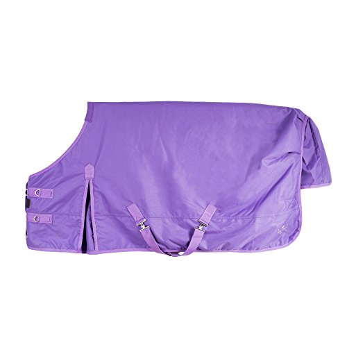 Top 10 recommendation horze pony turnout blanket 2019