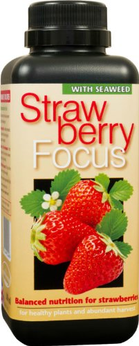1 Litre Strawberry Focus Specialist Fertiliser for Strawberries in pots or the ground. Growth Technology