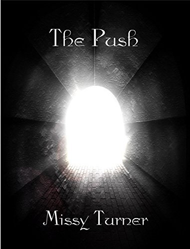 The Push by [Turner, Missy]