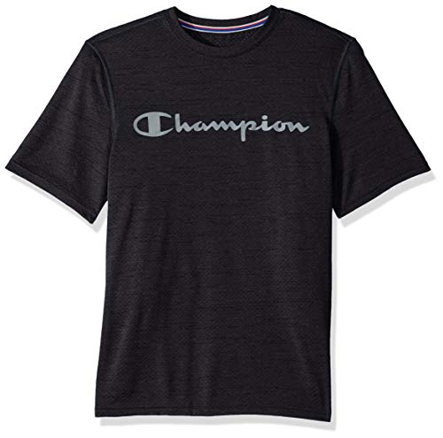 Champion Men's Double Dry Graphic Heather Tee, vetiver Gray, Large ()
