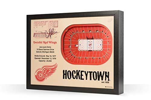 NHL Detroit Red Wings 25-Layer Stadiumviews 3D Wall Art