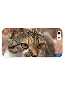 3d Full Wrap Case for iPhone 5/5s Animal Gazing Cat65