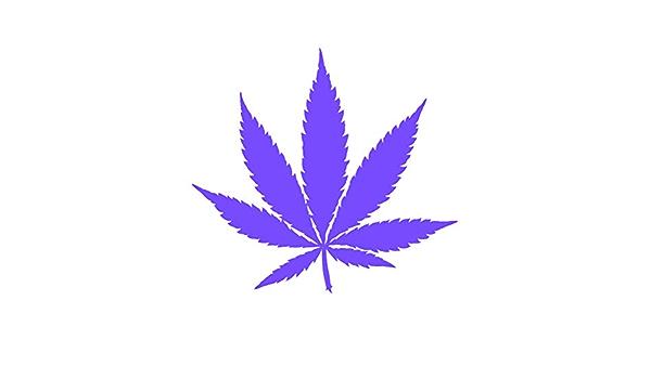 """Strainstickerz 1.5/"""" Vinyl Cannabis Dispensary Stickers Blue Cheese 420"""
