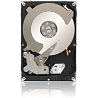 Seagate Enterprise Value HDD - Cloud Storage - 3 TB 7200RPM 6Gb/s 64 MB Cache 3.5 Inch Internal Bare Drive (ST3000NC000)