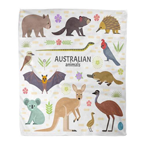 Golee Throw Blanket Australian Animals Flying Fox Kangaroo Koala Tasmanian Devil Echidna 50x60 Inches Warm Fuzzy Soft Blanket for Bed Sofa