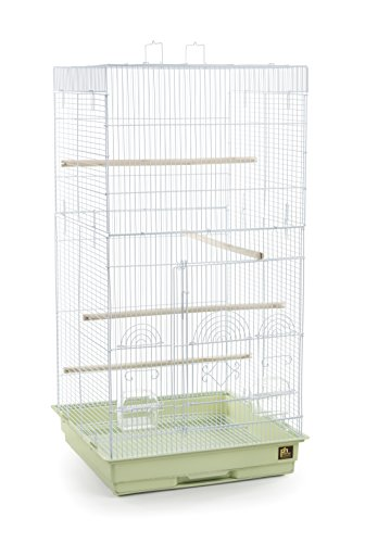 - Prevue Pet Products SPECONO1818H-SG Tall Tiel Cage, Sage Green