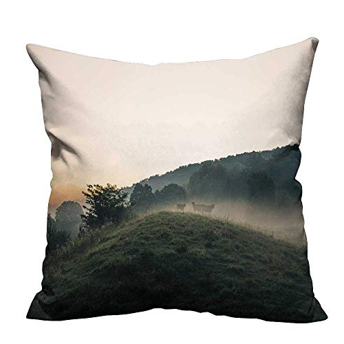 YOYI Super Soft Pillowcase Misty Mountain Forest Resists Stains 26x26 inch(Double-Sided Printing)