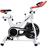 Ancheer Indoor Cycling Bike SP-3900 Ultra-quiet Fitness Spinning Bike with LCD Monitor
