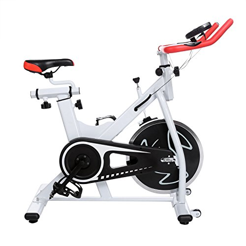 Ancheer Indoor Cycling Bike SP-4013 Ultra-quiet Fitness Spin Bike with LCD Monitor (wihte)