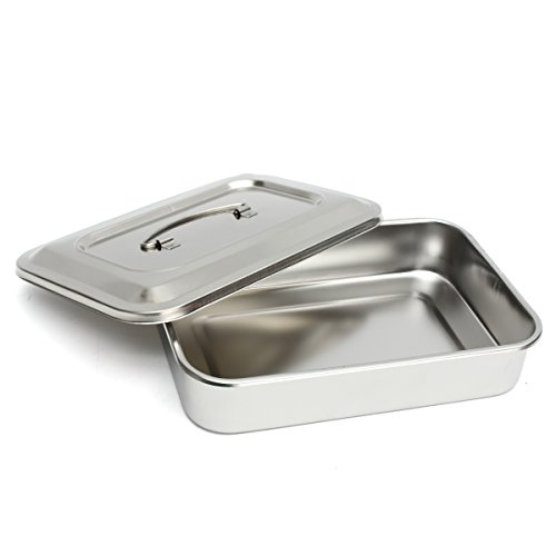 DIY 1 x Stainless Steel Instrument Tray with Lid & Handle for Medical Dental (Tray Stainless Tip Steel)