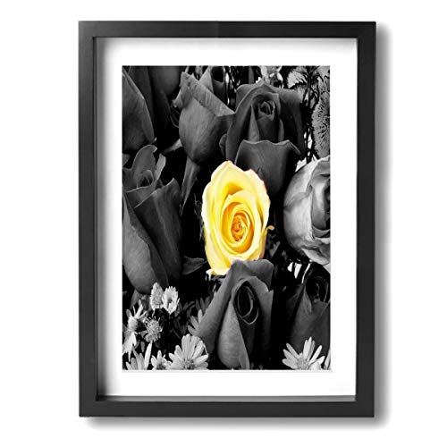 Ale-art Yellow Rose Black and White with Daisy Frame Bathroom Canvas Art -Modern Oil Painting for Wall Decor Gallery Wrapped Giclee Canvas Print Wall Art On Canvas Ready to - Black Zebra Frame